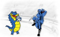 Bluehost Ninja vs Gator