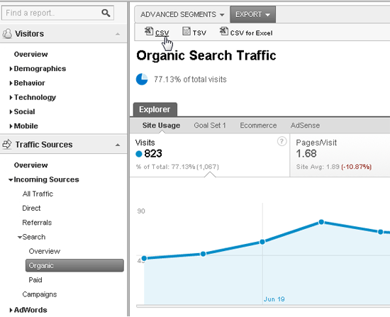 Google Analytics Screen Cap 2
