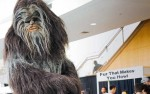 Wookie buying fur